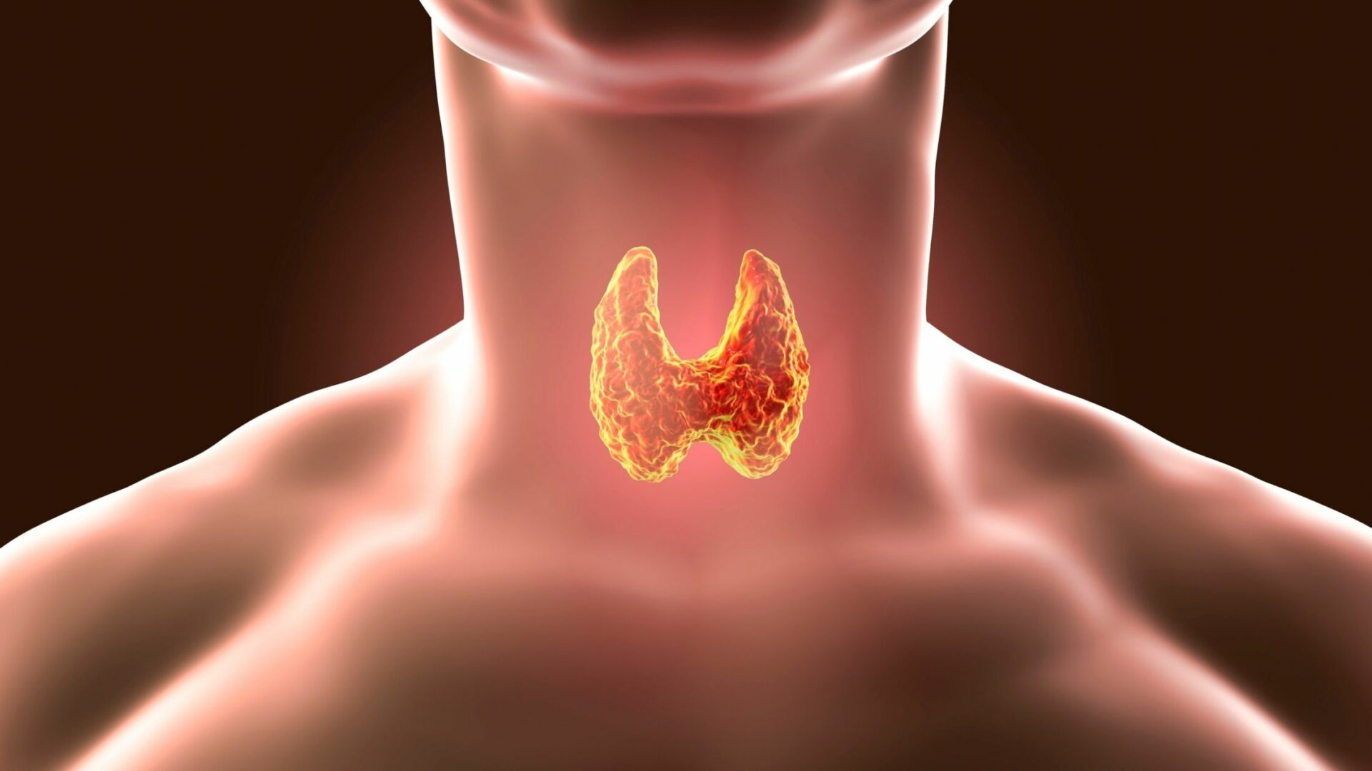 Is My Thyroid Making it Difficult to Lose Weight?