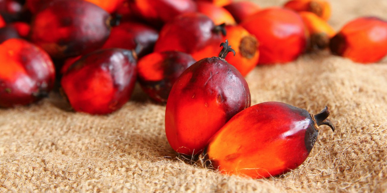 IS PALM OIL REALLY BAD?